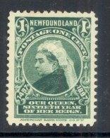 NEWFOUNDLAND, 1897 1c Fine Mounted Mint, Cat £6 - Newfoundland