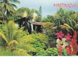 Francia--Martinica--Sur La Route De Morne Rouge--Molino De Agua - Flores