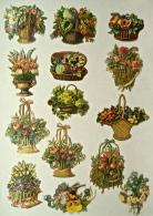 14 Découpis, Corbeilles  De Fleurs, Non Collés - Fleurs