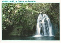 Francia--Guadeloupe---Route Des Mamelles--Cascade Aux Ecrevisses - Guadeloupe