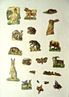 20 Découpis, Animaux, Non Collés - Animales