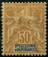Nouvelle Caledonie (1892) N 49 * (charniere)