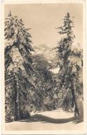 Winter Im Engadin -  Petit Gribouillage Au Dos - Dos Pouvoir Se Gommer) - GR Grisons