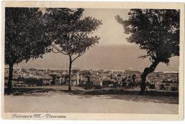 MARCHE-ANCONA- FALCONARA MARITTIMA VEDUTA PANORAMA CITTA' - Italia