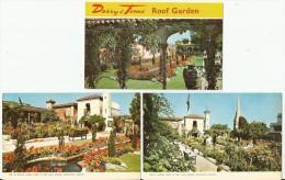 KENSINGTON Derry & Toms Roof Garden 9 Postcards - London Suburbs
