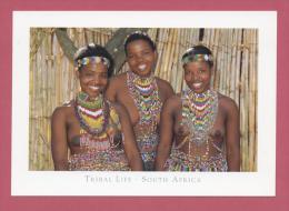AFRIQUE DU SUD : TRIBAL LIFE - ZULOU (ZULU) - Sudáfrica