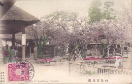 CPA - JAPON - JAPAN - TOKYO - MUKOJIMA - Tokio