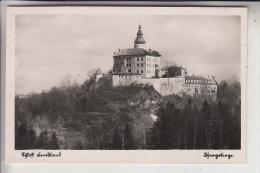 BÖHMEN & MÄHREN - FRYDLAND V CECHACH / FRIEDLAND/Isergebirge, Wallenstein - Schloß - Sudeten