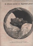 LE JOURNAL ILLUSTRE 14 01 1883 - MORT LEON GAMBETTA - OBSEQUES - VILLE D´AVRAY / PALAIS BOURBON / PLACE DE LA REPUBLIQUE - Giornali