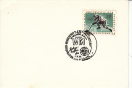 EISHOCKEY-ICEHOCKEY-HOCKE Y SUR GLACE-HOCKEY SU GHIACCIO, Austria, 1987, Special Cancellation !! - Hockey (su Ghiaccio)