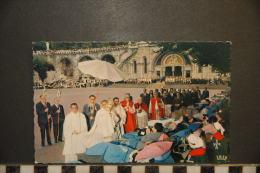 CP, 65, Lourdes Benediction Des Malades N°230 Edition P Doucet - Lourdes