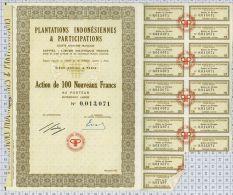 Plantations Indonésiennes Et Participations - Asie