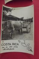 Photo Costa Rica Enu De San José Charette Decorée Signé Robillard - Costa Rica
