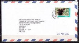 Luftpost, EF Wunderstrauch, St. Vincent Nach St. Ouen Jersey 2000? (43855) - St.Vincent & Grenadines