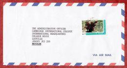 Luftpost, EF Wunderstrauch, Kingstown Nach Leoville Jersey 2001 (43856) - St.Vincent E Grenadine
