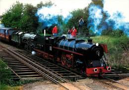 CPSM Train-Romney Hythe Et Dymchurch Railway-Black Prince   L1476 - Eisenbahnen
