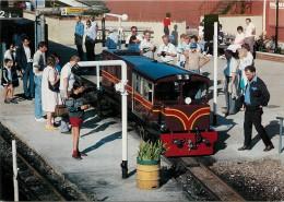 CPSM Train-Romney Hythe Et Dymchurch Railway-John Southland   L1476 - Eisenbahnen