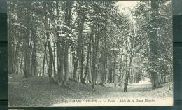 N° 44  ---   Marly-le-Roi -    La Forêt - Allée De La Diane Blanche    Dah153 - Marly Le Roi