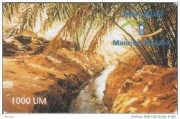 Mauritania, 1000 UM,  Oasis  (31-12-2002), 2 Scans. - Mauritanien