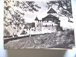 Liechtenstein Schloss Vaduz Im Fürstentum - Liechtenstein