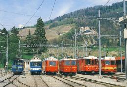 Train Chemin De Fer Bex-Villars-Bretaye  At Station Of Bevieux - Treinen