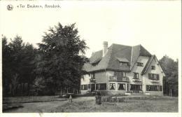 71674 - Belgique    Arendonk    Ter Beuken - Arendonk