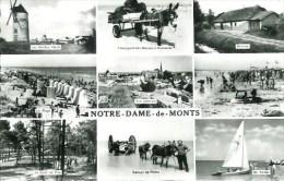 85 NOTRE-DAME-de-MONTS  Multivues - Andere Gemeenten