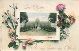 78 Du VESINET Je Vous Envoie Ces Fleurs  Carte Fantaisie - Le Vésinet