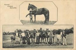 GRAND CIRQUE HELVETIA ( CHEVAUX ) - Circus