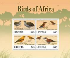 lib0713sh Liberia 2007 Birds s/s
