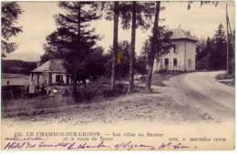 LE Chambon Sur Lignon - Les Villas Au Sarzier - Le Chambon-sur-Lignon
