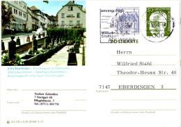 TOUR-L13 - ALLEMAGNE Entier Postal Illustré De BEERFELDEN - Thème Tourisme - Vacaciones & Turismo