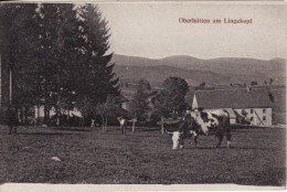 ORBEY (Haut-Rhin) Ferme Auberge-Chaume Oberhütten Am Lingekopf - Le Linge - 2 SCANS - - Frankrijk