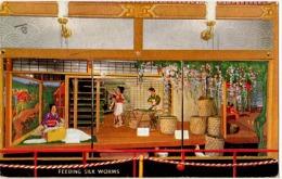 TEX-L5 - ETATS-UNIS Carte De 1933 CENTURY OF PROGRESS 1933 World4s Fair Chicago - Textile
