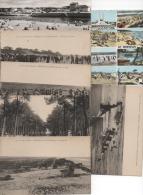 LOT DE 14 CPA  DE MIMIZAN  LANDES - 5 - 99 Cartoline