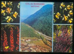 CPM  88  COL DE BUSSANG Et Fleurs Vosgiennes - Col De Bussang