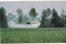 Coming In For A Close Dive, Crop Dusting, Peanut Crop, United States, 60´s - 1946-....: Moderne
