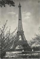 Paris - Tour Eiffel Et Pont D'Iéna  -  Cachet Postal 20/3/1953 - Eiffelturm