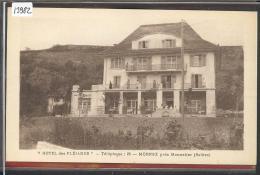 MORNEX - HOTEL DES PLEIADES - TB - Autres Communes
