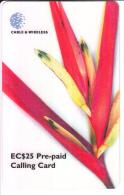 ST.LUCIA-P2-PRE PAID CALLING CARD EC$25 - Saint Lucia