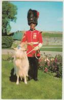 Le Caporal - 'Garde De Baptisme'  & Mascotte Chevre / Goat Mascot - 'La Citidelle' 22e Regiment - Canada - Politie-Rijkswacht
