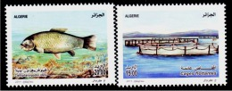 Algeria-Algérie- 2013 - Carpe De Roseau Et Cage Flottante. - Algerien (1962-...)