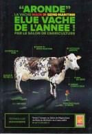 """Vache De L´Année 2013 Par Le Salon De L´Agriculture """"Aronde"""" Habite Croix Maré En Seine Maritime, élevage Mathieu Fercoq - France"""