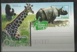 Pologne Poland Polen EP 34 Rhinocéros  Girafe Gorille Giraffe Jirafa - Rhinozerosse