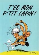 FRANQUIN  ILLUSTRATEUR  LAGAFFE - Künstlerkarten