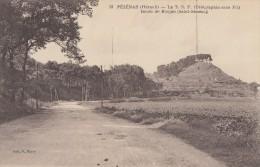 CPA - Pézenas - La T.S.F. ( Télégraphie Sans Fil ) Route De Roujan ( St Siméon ) - Pezenas