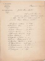 1901 Facture Lettre Invoice Rapperswil Sankt Gallen Zürichsee Switserland Handelsgärtner - Switzerland