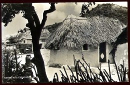 Cpa Carte Photo Curaçao Native Hut Antilles Néerlandaises A11 - Curaçao