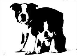 (200) Dog - Chien - Chiens