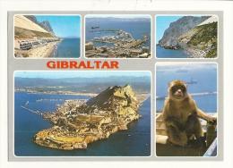 Cp, Gibraltar, Mult-Vues - Gibraltar